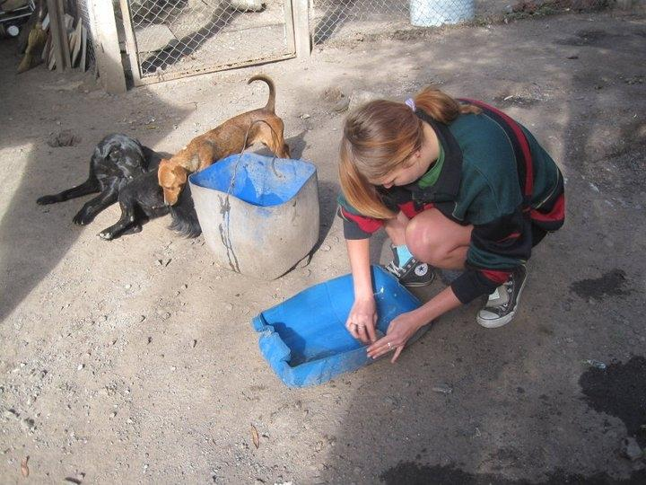 Stage di Veterinaria in Argentina