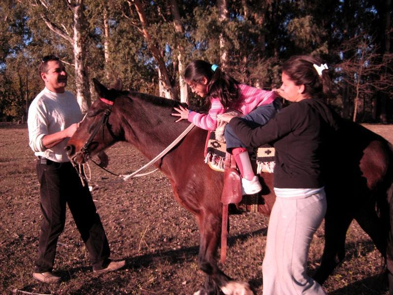 Volontariato in Argentina Terapia Equestre