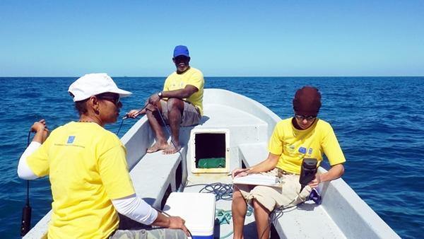 Ricerche scientifiche e immersioni in Belize
