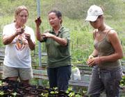 Volontariato ambiente in Ecuador