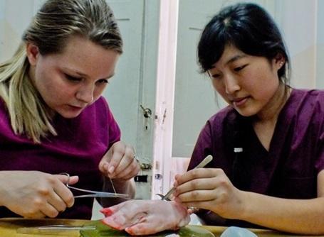 医療プロジェクトで縫合の練習をするプロジェクトアブロードのインターン