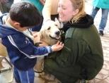 Volunteer Animal Therapy in Bolivia with Projects Abroad
