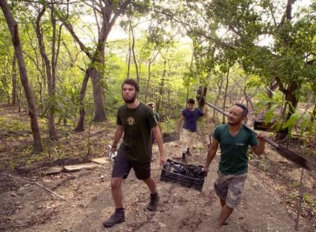 環境保護プロジェクトで植林のための苗木を運ぶプロジェクトアブロードのボランティアたち