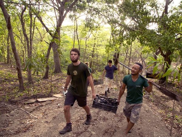 コスタリカの熱帯雨林保護プロジェクトで植林のための苗木を運ぶボランティアたち