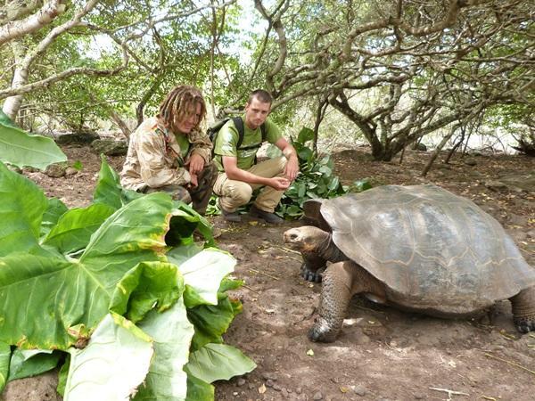 エクアドルの環境保護プロジェクトでガラパゴスゾウガメにエサを与えるボランティアたち