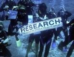 Shark Conservation volunteers take part in Survey Dive in Fiji