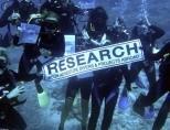 Shark Conservation volunteers take part in Survey Dive in Fiji