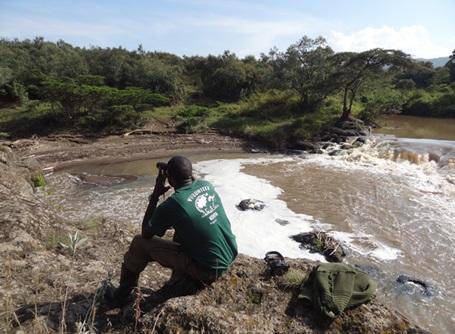ケニアのサバンナで動物の保護活動を行う環境保護プロジェクト