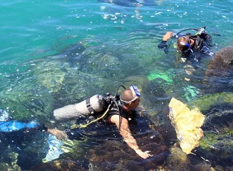 해양 청소 프로젝트에 참가한 갈라파고스의 환경보호 봉사자 그룹