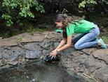 갈라파고스 섬의 거북보호활동