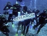 피지에서 다이빙에 참가한 상어보호 환경보호 활동 봉사자들