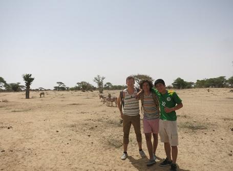 세네갈에서 야외에서 활동하는 청소년 봉사자들
