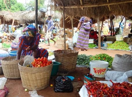 토고 농부들의 재래시장