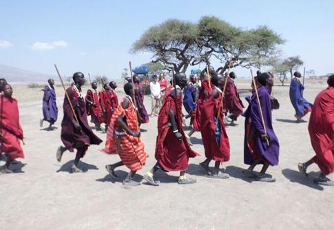 Leden van maasai stam in Tanzania doen traditionele dans