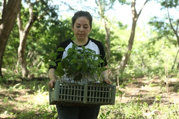 Groep studenten uit Londen neemt deel aan herbebossingsproject in een gemeenschap bij het Barra Honda National Park in Costa Rica