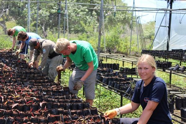 Vrijwilligers kunnen op het natuurbehoud project in Ecuador mee helpen in de boomkwekerij