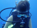 Een vrijwilliger maakt onderwater aantekeningen bij het haaienbeschermingsproject in Fiji