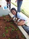 Vrijwilliger op de jongerenreis in Jamaica plant bloemen op een sociaal project