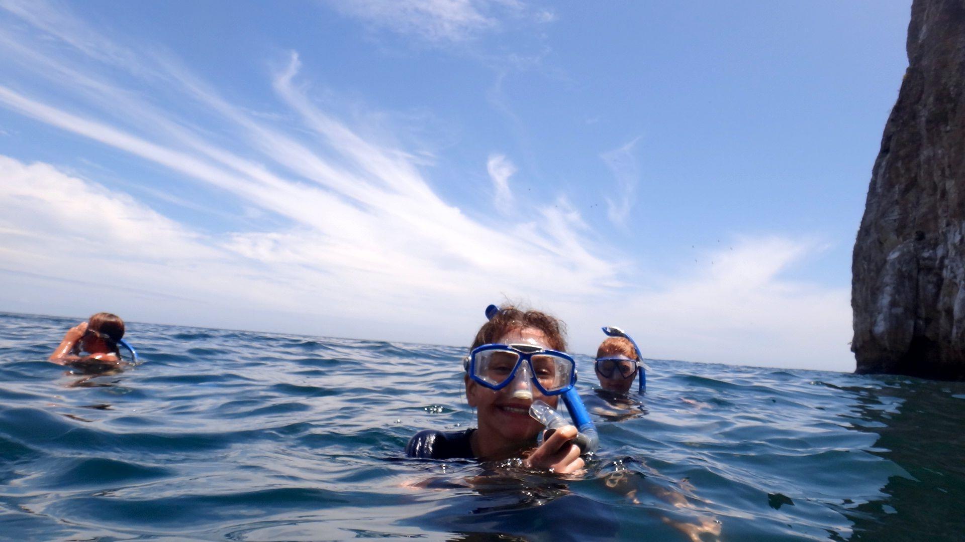 Combineer vrijwilligerswerk op de Galapagos eilanden met snorkelen in je vrije tijd