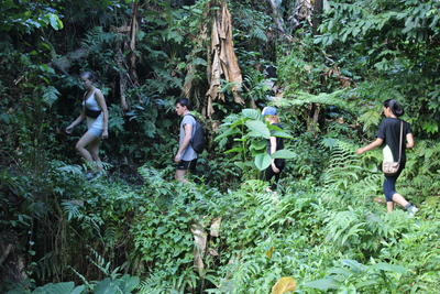 : Projects Abroad vrijwilligers op avontuur door regenwoud in Samoa