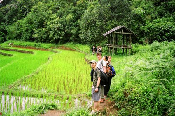 Projects Abroad vrijwilligers maken een wandeling langs de rijstvelden in Thailand