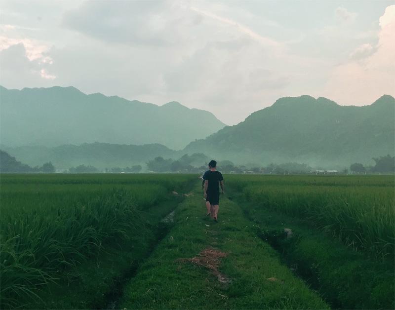 Vrijwilligers lopen door de mistige rijstvelden van Mai Chau