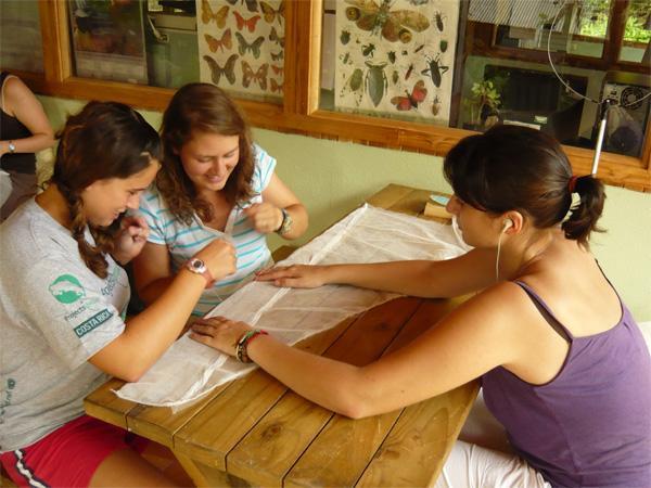 Volunteers making a butterfly net