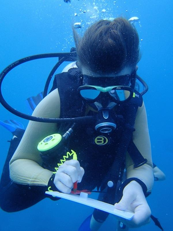 A volunteer collecting data underwater