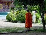 A Buddhist monk walks among temple grounds in Laos