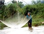 A local woman fishes in the water using a traditional net