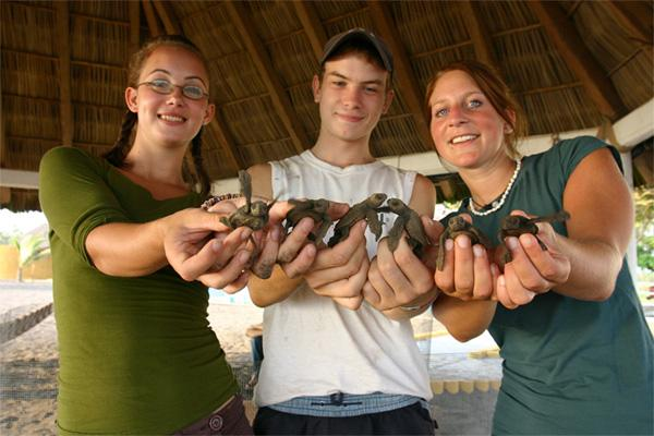 Volunteers with baby turtles