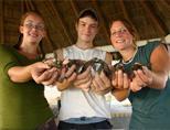 Volunteers with baby turtles