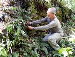 Inca projects volunteer