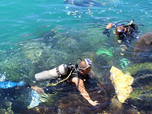 Group of conservation volunteers in Galapagos while doing an ocean cleanup project