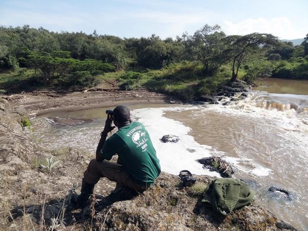 A staff member at the Conservation project surveys the Kenyan landscape