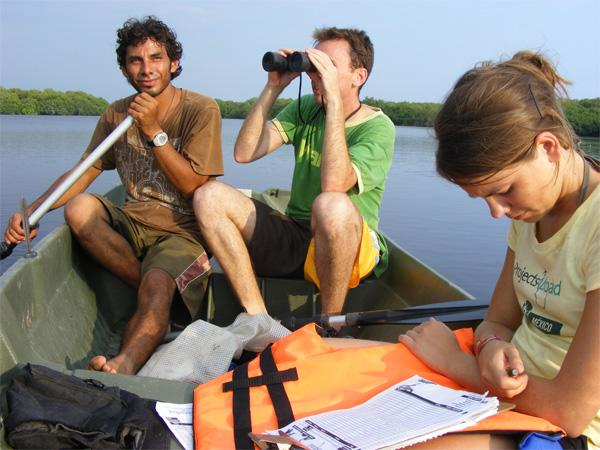 Conservation volunteers collecting data