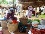 A local farmer's market in Togo