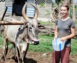 Tina, Naturschutz in Indien