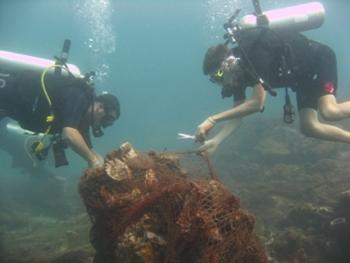 Appeal for volunteers to dive in to help Thailand