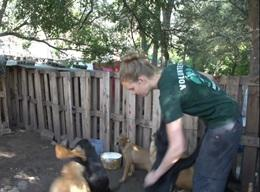 Veterinary Medicine & Animal Care in Argentina