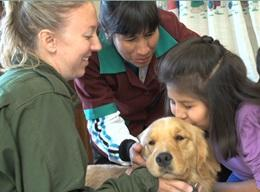 Canine Therapy in Bolivia