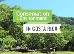 Tropical Dry Forest Conservation in Costa Rica