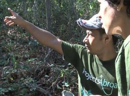 A Volunteer on a Conservation Project in Costa Rica