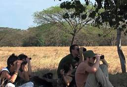 Ecovolontariat et environnement au Costa Rica