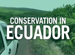 Conservation in Ecuador