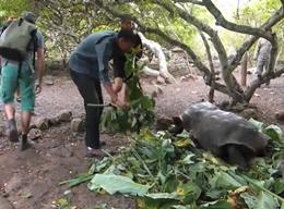 Naturschutz in Ecuador
