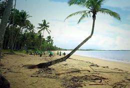 Fidschi - Inseln: #myfijitime