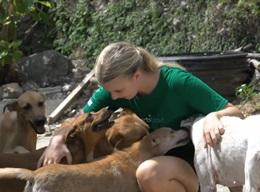 Veterinary Medicine & Animal Care in Jamaica