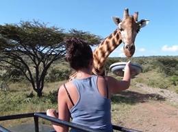 Naturschutz in Kenia