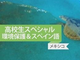 ウミガメ&沿岸保護プロジェクト in メキシコ 体験者インタビュー